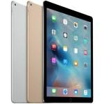 iPad Pro 12.9 Ombytning